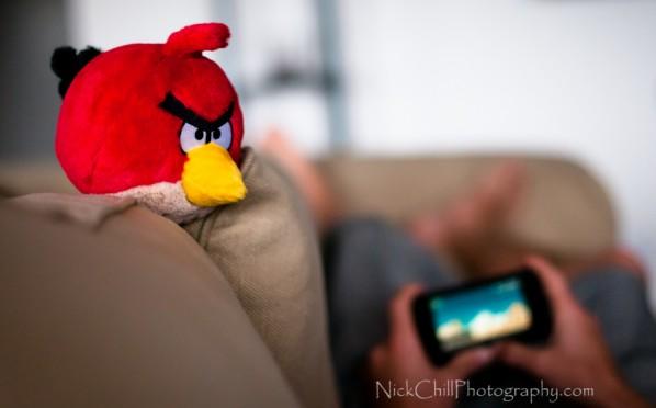 Certains droits réservés par Nick Chill Photography